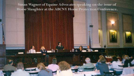Susan Wagner, Equine Advocates speaking at the ABCNY Horse Protection Conference on horse slaughter.