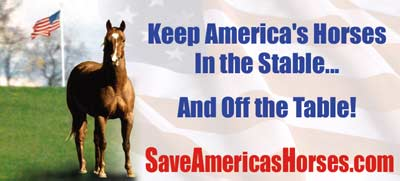 Save America's Horse Slaughter Billboard campaign