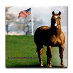 EPN Save Americas Horses tile coaster available at Cafe Press