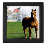 Save Americas Horses tile
