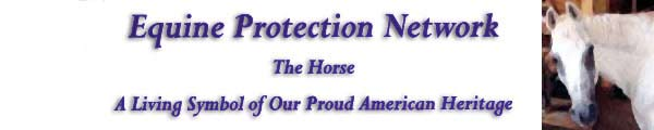 Equine Protection Network Horse Slaughter Awareness Campaign