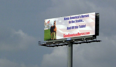 Save America's Horses Billboard towers over center city Philadelphia