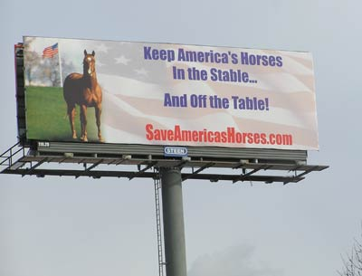 Save Americas Horses Billboard Campaign